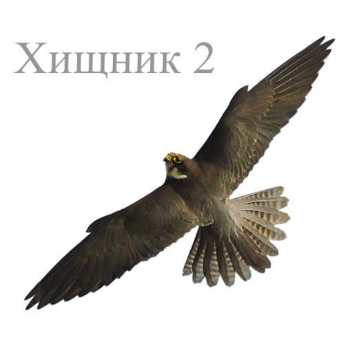 """Визуальный отпугиватель птиц """"Хищник-2"""""""
